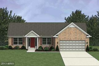 Featherdale Circle, Fayetteville, PA 17222 (#FL8188508) :: Pearson Smith Realty
