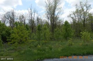 Lot # 26 Apple Jack Court, Mercersburg, PA 17236 (#FL8466785) :: Pearson Smith Realty