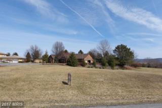 B-11 Carnoustie Drive, Chambersburg, PA 17201 (#FL8578469) :: LoCoMusings