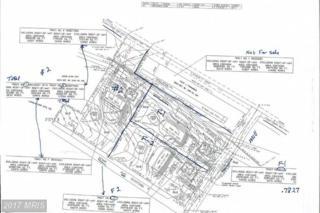 Lot 2 Fannettsburg Road, Fannettsburg, PA 17221 (#FL8601703) :: Pearson Smith Realty