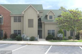 14200 Northern Lights Drive #33, Mercersburg, PA 17236 (#FL9501782) :: Pearson Smith Realty