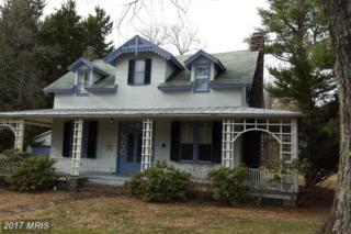 14715 Charmian Road, Blue Ridge Summit, PA 17214 (#FL9590511) :: Pearson Smith Realty