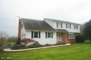 11110 Gehr Road, Waynesboro, PA 17268 (#FL9637783) :: LoCoMusings