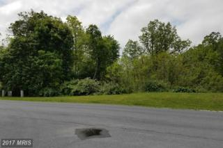157 Dickeys Drive, Chambersburg, PA 17202 (#FL9653821) :: LoCoMusings