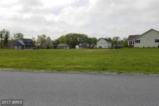 171 Dickeys Drive, Chambersburg, PA 17202 (#FL9653833) :: LoCoMusings