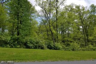 152 Mahantango Drive, Chambersburg, PA 17202 (#FL9654188) :: LoCoMusings