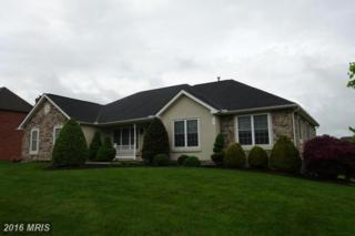6 Starlight Drive, Greencastle, PA 17225 (#FL9654693) :: Pearson Smith Realty