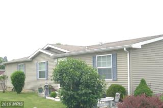 110 Kristyn Court, Waynesboro, PA 17268 (#FL9676212) :: Pearson Smith Realty