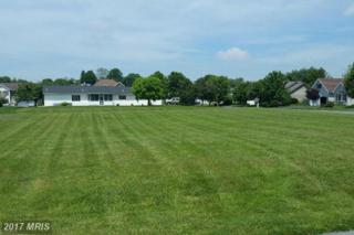 49 Delaware Circle, Waynesboro, PA 17268 (#FL9681672) :: LoCoMusings