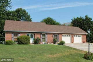 6325 Greenbriar Lane, Fayetteville, PA 17222 (#FL9731557) :: Pearson Smith Realty