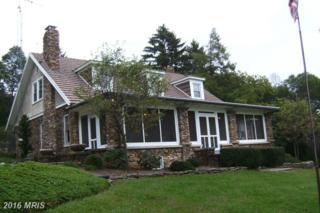 122 Skyhigh Street, Saint Thomas, PA 17252 (#FL9787363) :: Pearson Smith Realty