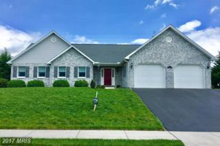 237 Phoenix Drive, Chambersburg, PA 17201 (#FL9826514) :: Pearson Smith Realty