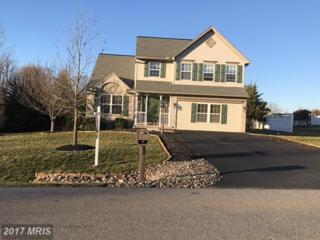 13123 Whispering Spring Drive, Greencastle, PA 17225 (#FL9862596) :: LoCoMusings