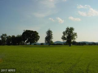 12 Chattins Run Lane, Delaplane, VA 20144 (#FQ7688859) :: LoCoMusings