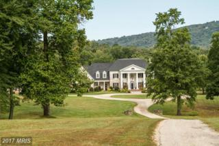 10000 Mount Airy Road, Upperville, VA 20184 (#FQ8470391) :: Pearson Smith Realty