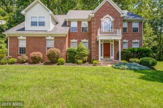 5707 Greenview Lane, Warrenton, VA 20187 (#FQ9710237) :: Pearson Smith Realty