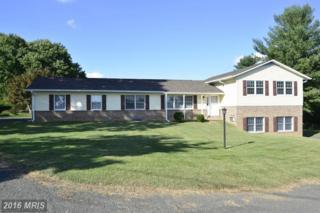 7306 Rectors Lane, Marshall, VA 20115 (#FQ9781848) :: Pearson Smith Realty