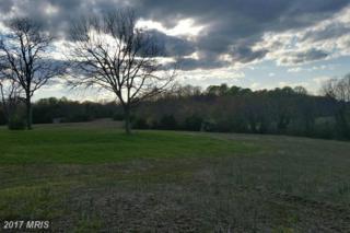 12342 Old Mill Road, Midland, VA 22728 (#FQ9785986) :: LoCoMusings