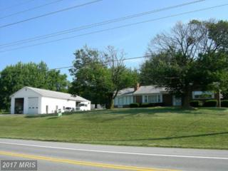 4336 Old National Pike, Middletown, MD 21769 (#FR6447276) :: Pearson Smith Realty