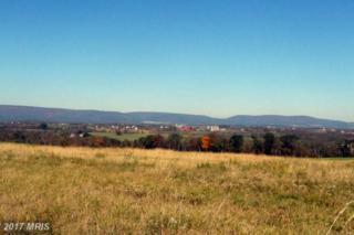 11924 Oak Hill Road, Woodsboro, MD 21798 (#FR8210988) :: Pearson Smith Realty