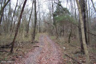 Reels Mill Road, Frederick, MD 21704 (#FR8230047) :: LoCoMusings