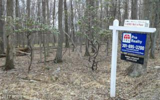 10697 Gambrill Park Road, Frederick, MD 21702 (#FR8761202) :: Pearson Smith Realty
