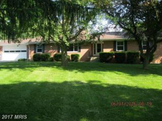 5744 Etzler Road, Frederick, MD 21702 (#FR9673552) :: Pearson Smith Realty