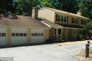 5103 Wigville Road, Thurmont, MD 21788 (#FR9701828) :: LoCoMusings