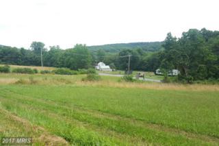 14715 Herman Hauver Road, Sabillasville, MD 21780 (#FR9702349) :: LoCoMusings