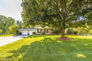 7208 Drought Spring Drive, Frederick, MD 21702 (#FR9749157) :: LoCoMusings