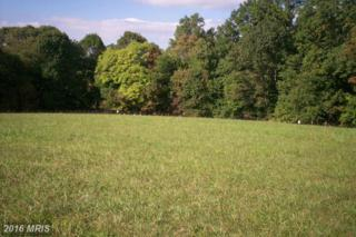 Lot 6 Autumn Crest Dr. South Drive, Mount Airy, MD 21771 (#FR9782693) :: Pearson Smith Realty