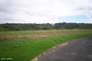 Lot 1 Bill Moxley Road, Mount Airy, MD 21771 (#FR9784354) :: LoCoMusings