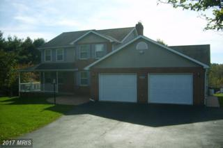8317 Pete Wiles Road, Middletown, MD 21769 (#FR9798299) :: LoCoMusings