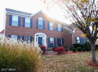 5701 Meyer Avenue, New Market, MD 21774 (#FR9818553) :: Pearson Smith Realty