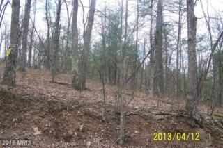 Lot 9 Delancy Road, Big Cove Tannery, PA 17212 (#FU8029848) :: Pearson Smith Realty