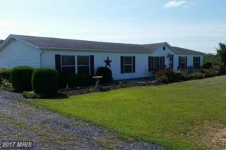 167 Cromwell Ridge Road, Hustontown, PA 17229 (#FU9752410) :: Pearson Smith Realty