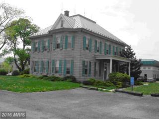 401 Pegasus Court, Winchester, VA 22602 (#FV8447543) :: Pearson Smith Realty