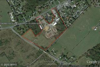 2546 Martinsburg Pike, Stephenson, VA 22656 (#FV8453709) :: Pearson Smith Realty