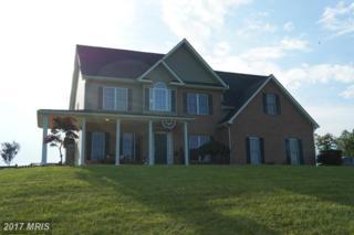 1451 Cedar Grove Road, Winchester, VA 22603 (#FV8686721) :: LoCoMusings