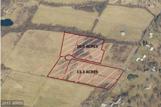 0 Marion Drive, Winchester, VA 22603 (#FV8719645) :: Pearson Smith Realty