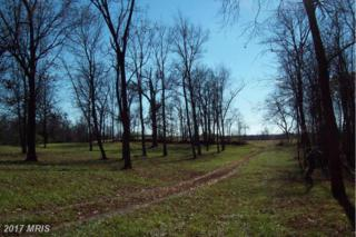 Union View, Winchester, VA 22603 (#FV9531166) :: LoCoMusings