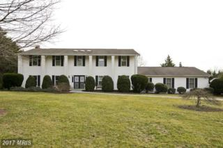 138 Mountain View Lane, Winchester, VA 22602 (#FV9637850) :: LoCoMusings