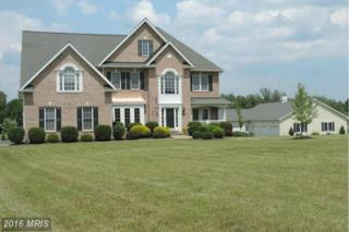 1871 Brucetown Road, Clear Brook, VA 22624 (#FV9729604) :: Pearson Smith Realty