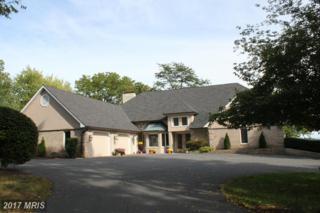 340 Windsor Lane, Winchester, VA 22602 (#FV9770993) :: LoCoMusings