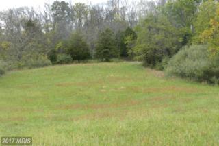 LOT 4 Back Mountain Road, Winchester, VA 22602 (#FV9791748) :: Pearson Smith Realty