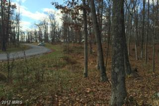 Lot 5 Christo Rey Drive, Clear Brook, VA 22624 (#FV9832795) :: Pearson Smith Realty