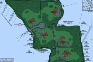 Bull Neck Lot 4, Mclean, VA 22102 (#FX8739383) :: LoCoMusings