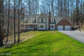 9117 Maria Avenue, Great Falls, VA 22066 (#FX8759898) :: Pearson Smith Realty