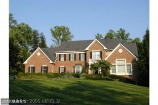6191 Freds Oak Road, Fairfax Station, VA 22039 (#FX9547261) :: Pearson Smith Realty