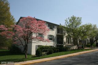 5815-M Rexford Drive #788, Springfield, VA 22152 (#FX9575191) :: Pearson Smith Realty